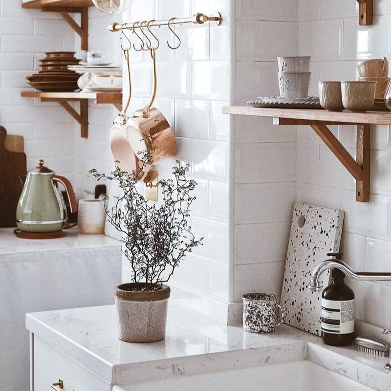 green-leafed plant with gray pot on sink