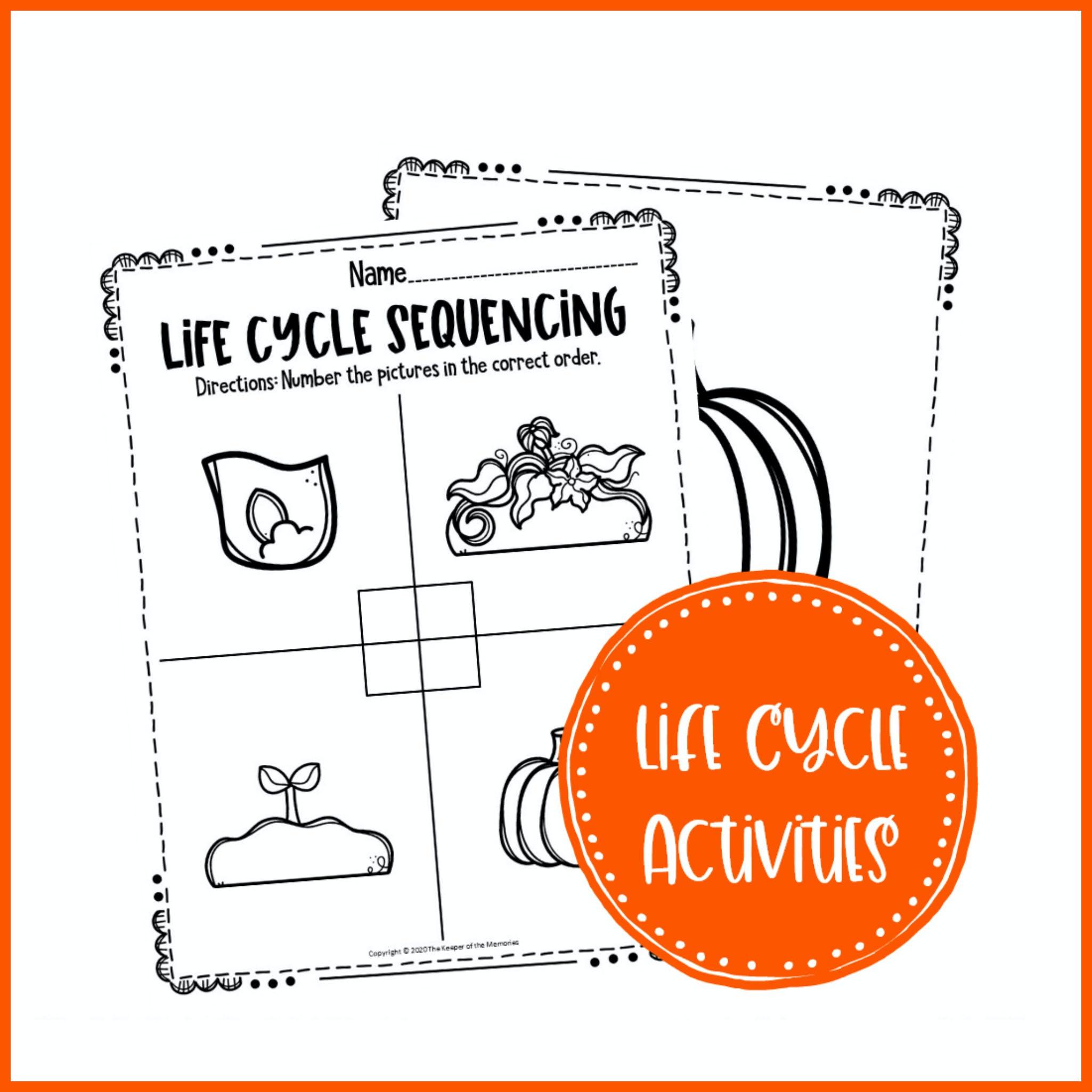 Free Printable Pumpkin Life Cycle Worksheets The Keeper Of The Memories