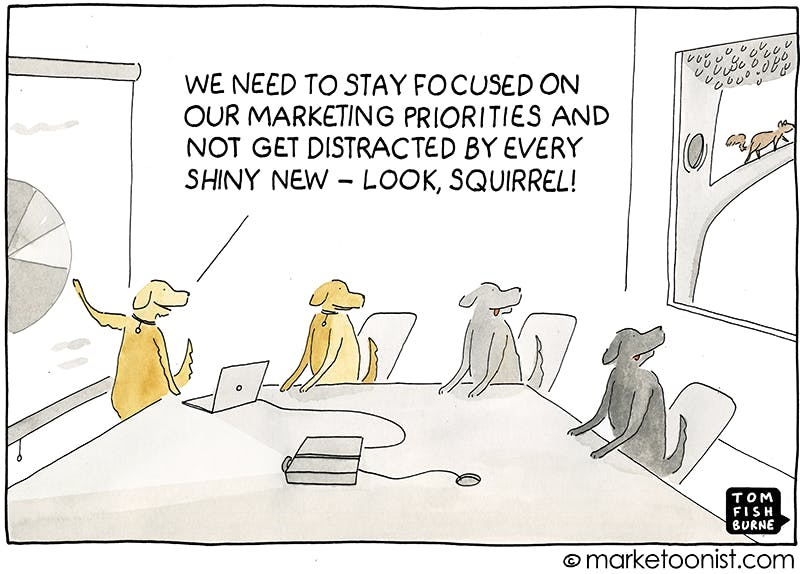 Cartoon of dogs in business meeting trying to stay focused but there's a squirrel outside