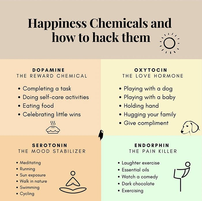 Happiness Chemicals and how to hack them