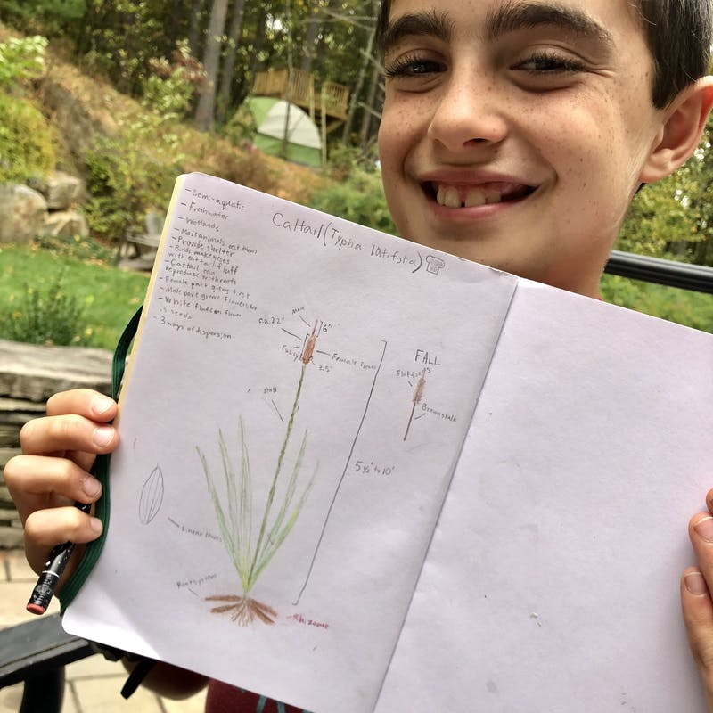 The Best Nature Study Resources for Your Homeschooln | My Little Poppies