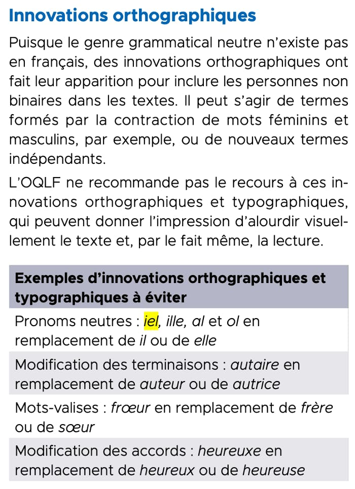 A screenshot of a table from the IRNS guide including all the new formulations and neologisms that many French nonbinary people use.