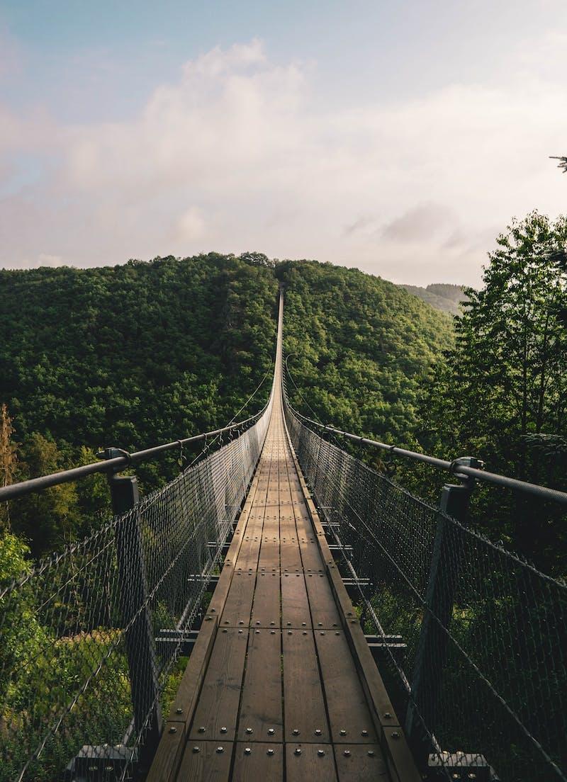 empty hanging bridge through forest