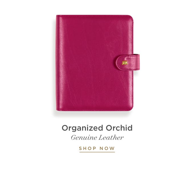 Organized Orchid.