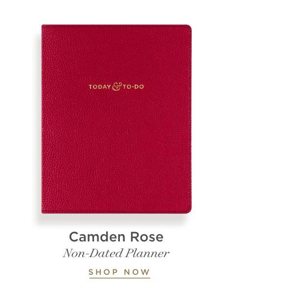 Camden Rose Today & To-Do.