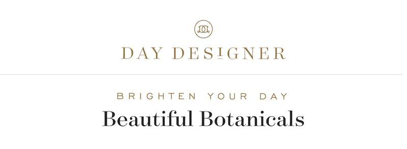 Brighten Your Day!