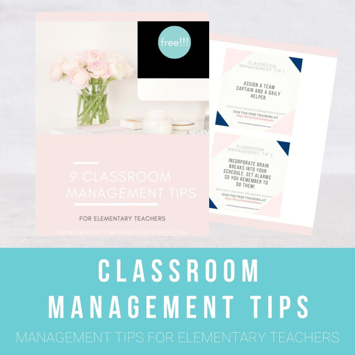 "Screenshot of resource. Text overlay: ""Classroom Management Tips for Elementary Teachers\"""
