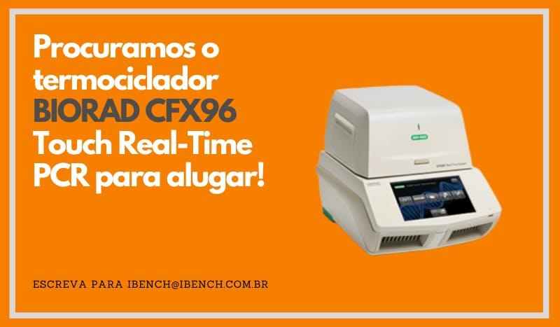 real time BIORAD