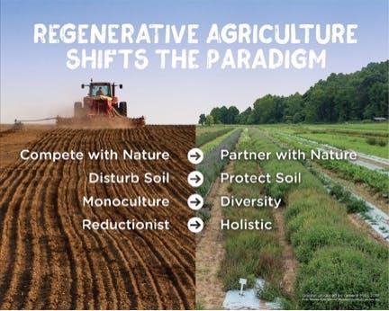 Conventional farming vs regenerative agriculture