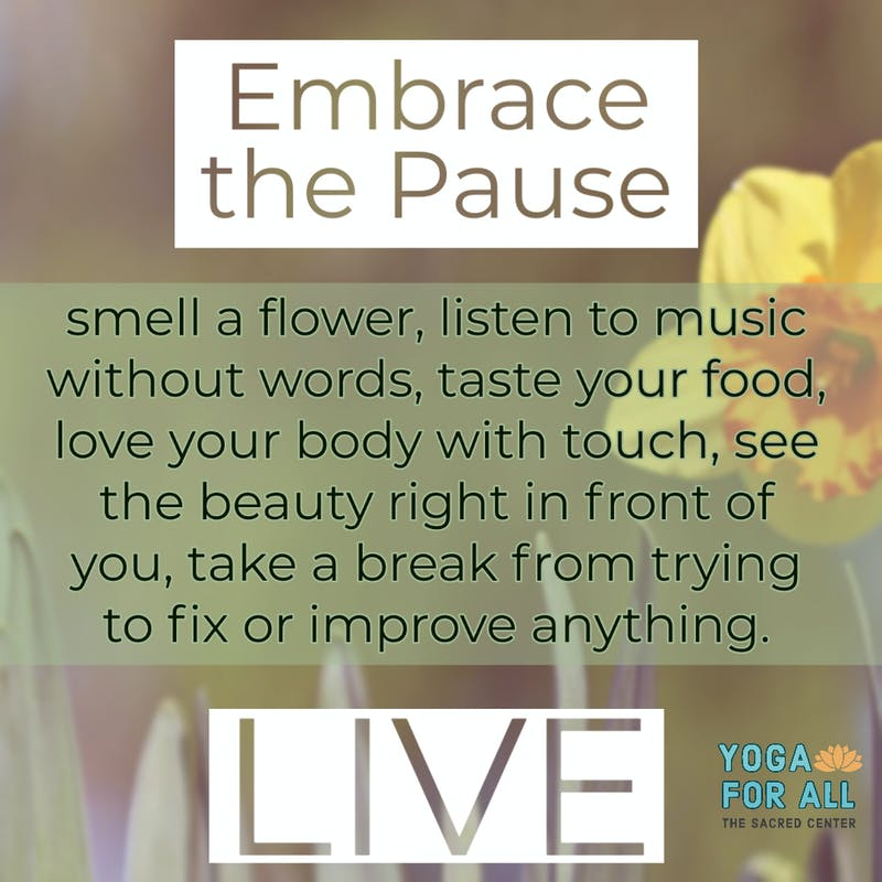 Embrace the Pause