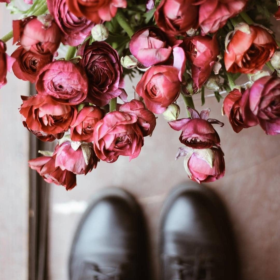 Ge zijt een bloem 🌺  Een bloem die licht en water nodig heeft om te kunnen bloeien zoals enkel zij kan, zodat ook anderen wat van haar vreugde krijgen en het leven er elke dag net iets mooier uitziet.  Gij zijt een bloem 🤗  Wie verdient voor jou een compliment?