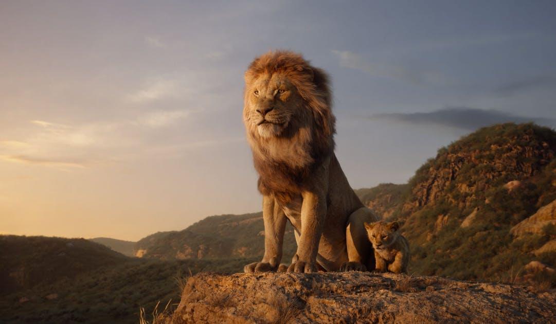 Work like a Lion